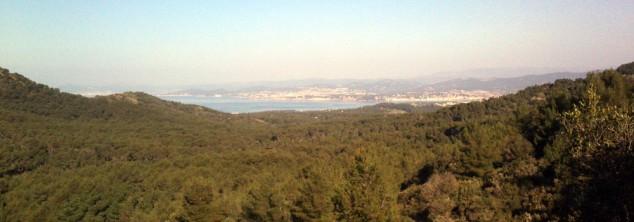 Vue de Sanary et Bandol depuis la pinède