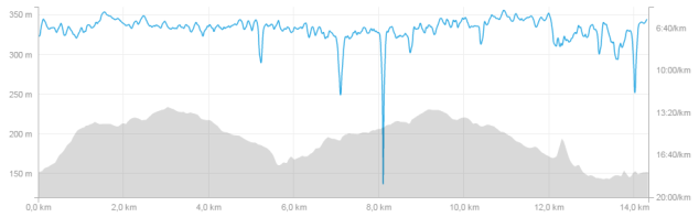 Profil des 15 km de Charleroi 2016